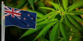Nya Zealand cannabis flagga