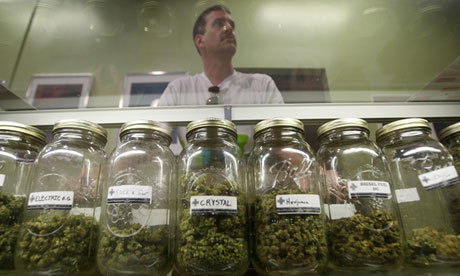 Glasburkar med cannabis