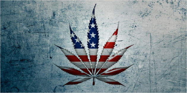 USA cannabis löv